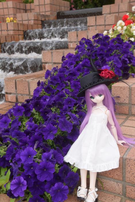 f:id:ryouse1366:20150530065607j:image