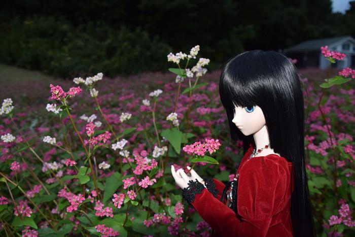 f:id:ryouse1366:20151112122708j:image