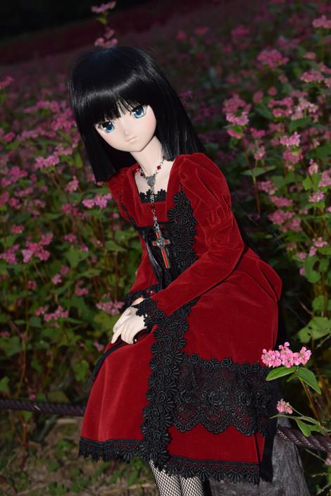 f:id:ryouse1366:20151112122709j:image