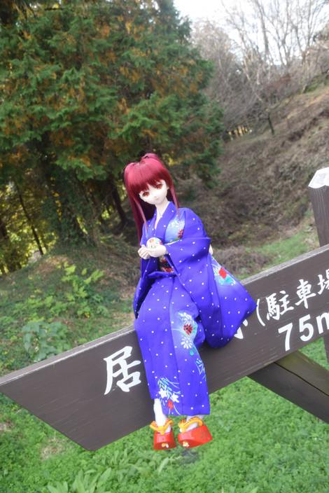 f:id:ryouse1366:20151127191206j:image