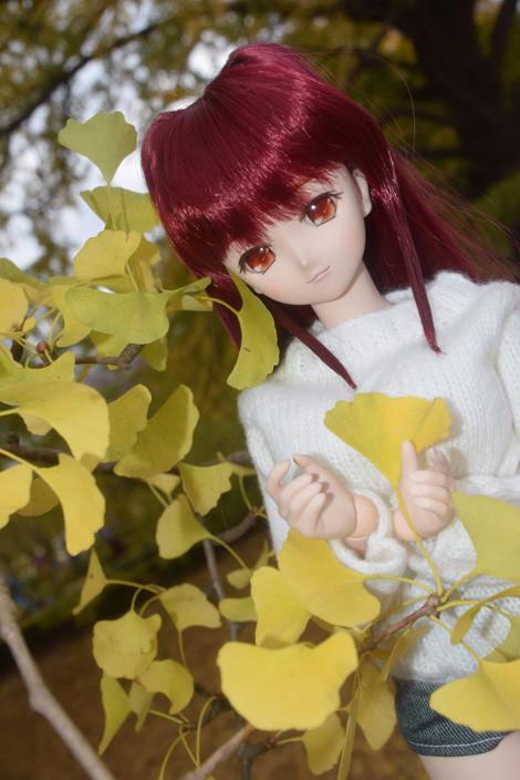 f:id:ryouse1366:20151130162059j:image