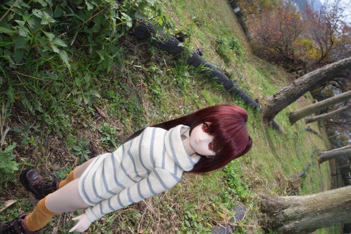 f:id:ryouse1366:20151202195553j:image