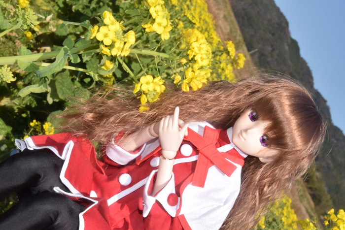 f:id:ryouse1366:20160304193346j:image