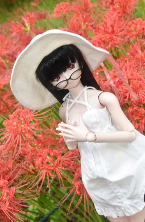 f:id:ryouse1366:20171014165413j:image