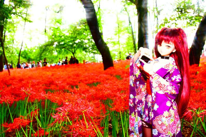 f:id:ryouse1366:20171021165107j:image