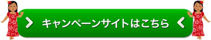アロハデータ申し込みページ画像