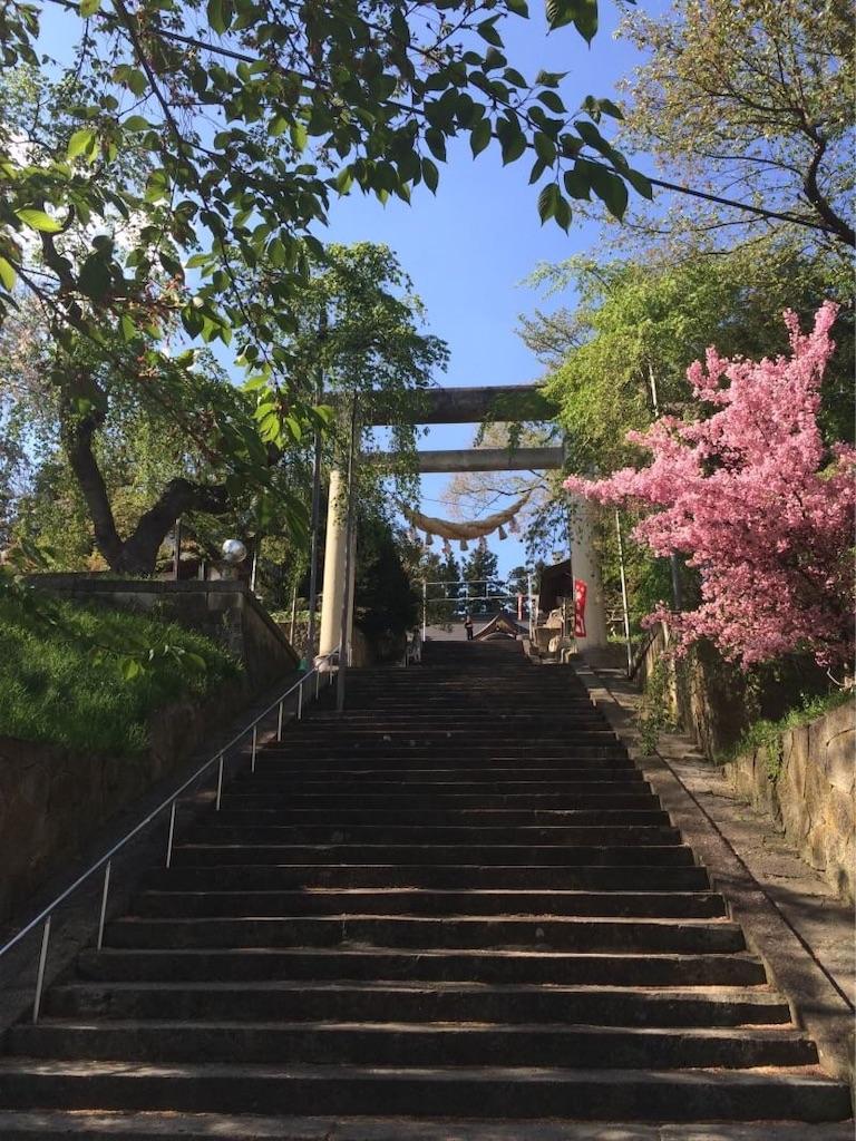 f:id:ryouta-tumuraya-ganmo175:20191014210536j:image