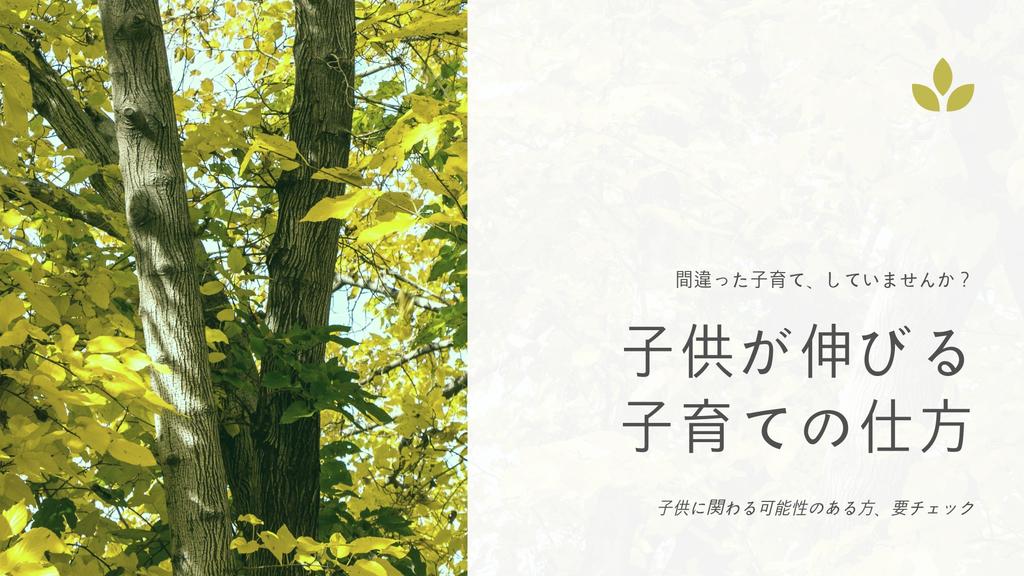 f:id:ryoutyanneru:20181120160219j:plain