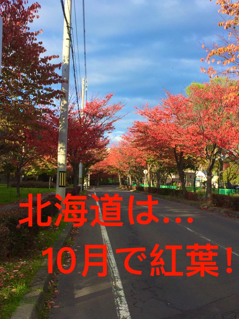 f:id:ryoyatsuna:20171018220521j:plain