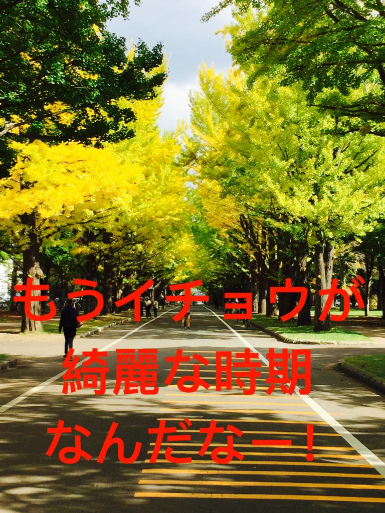 f:id:ryoyatsuna:20171019121718j:plain