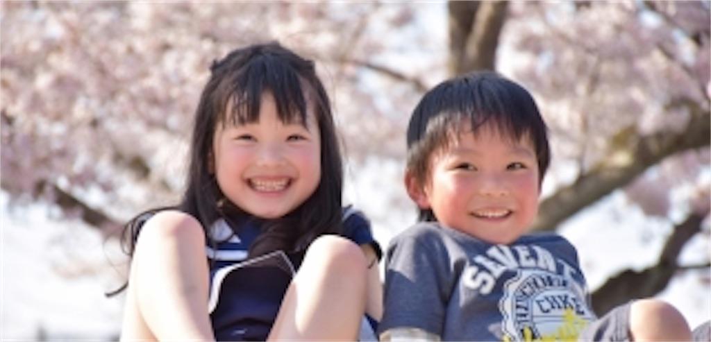 f:id:ryu-ga-gotosi:20190427085413j:image