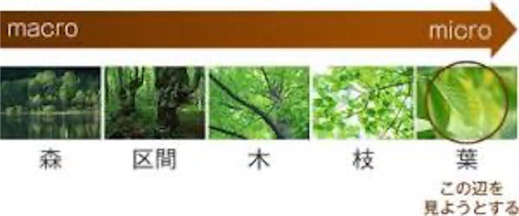 f:id:ryu-ga-gotosi:20191116113333j:image