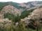 吉野山2014