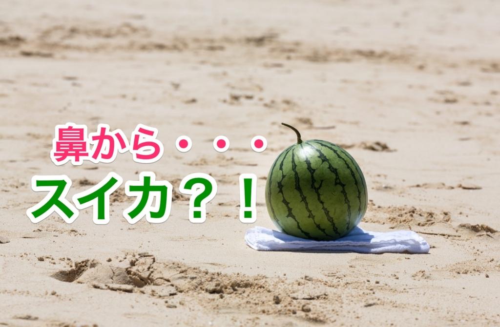 f:id:ryugaku_summer:20161110123821j:plain