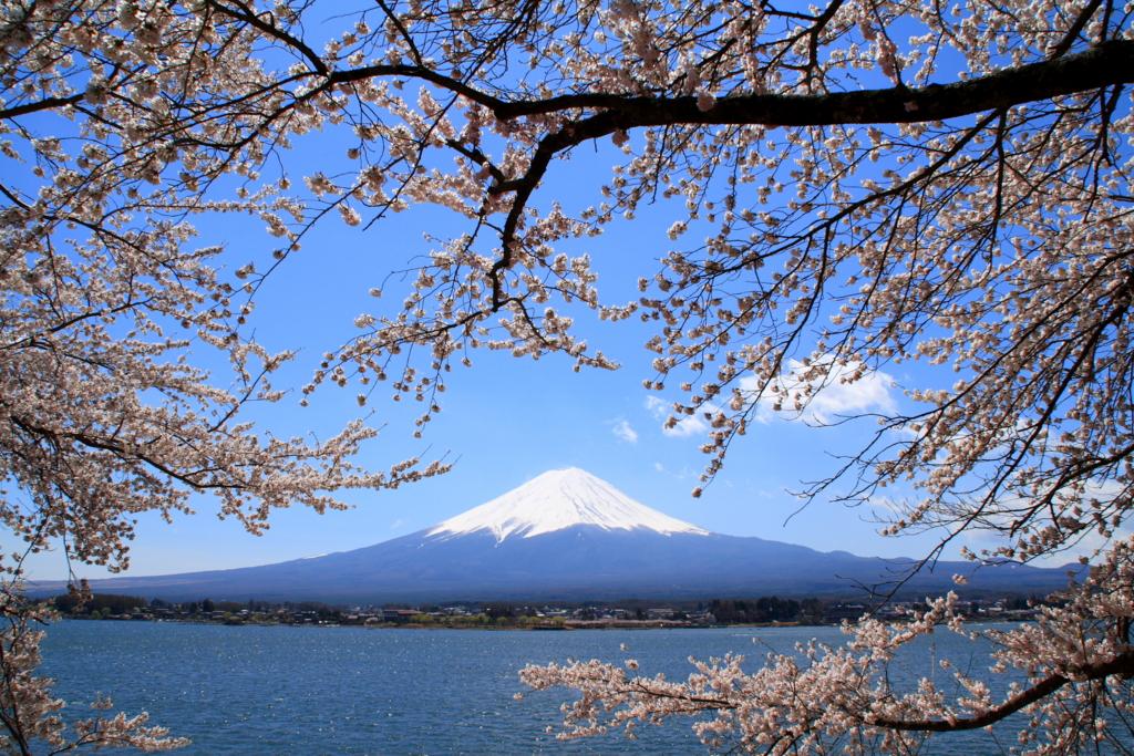 外国人の方が日本に詳しい