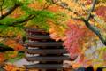 談山神社(奈良)