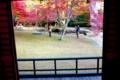 奈良:正暦寺