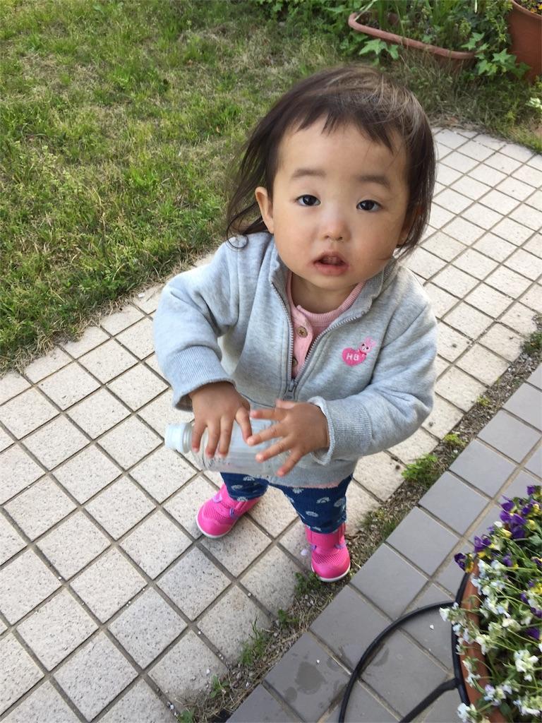 f:id:ryuhinamama08200501:20170414205855j:image