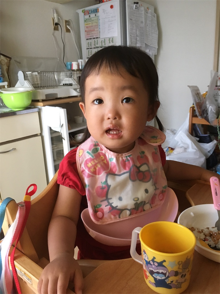 f:id:ryuhinamama08200501:20170908194151j:image