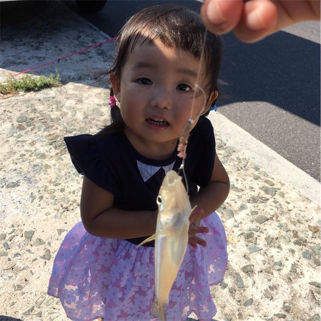 f:id:ryuhinamama08200501:20171009212509j:image