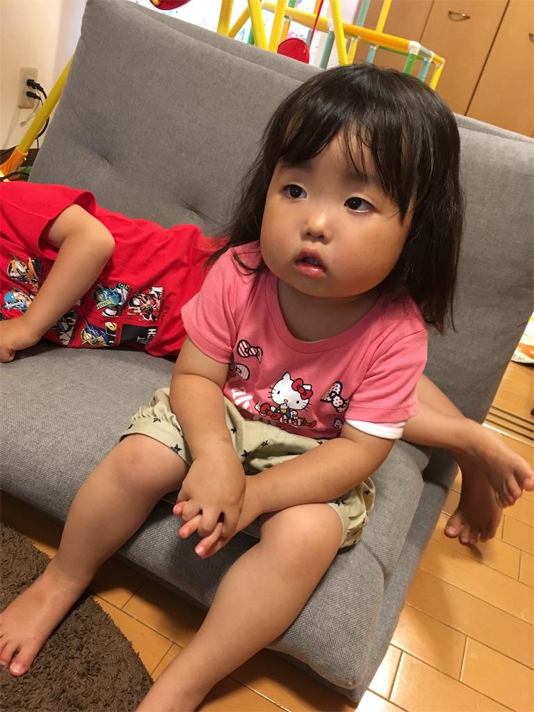 f:id:ryuhinamama08200501:20180530075846j:image