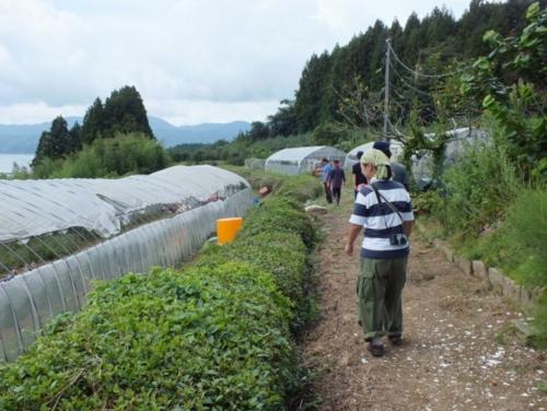 f:id:ryukoku-cha:20120911174930j:image
