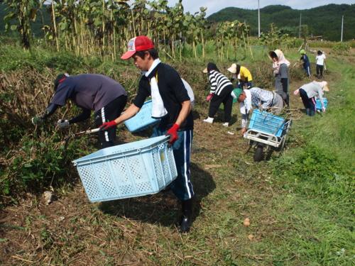 f:id:ryukoku-cha:20120913193734j:image