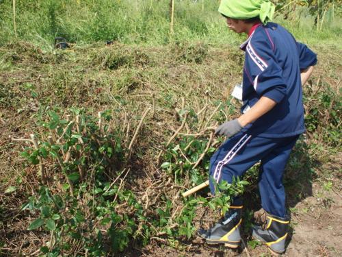 f:id:ryukoku-cha:20120913204822j:image