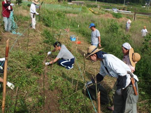 f:id:ryukoku-cha:20131003191802j:image
