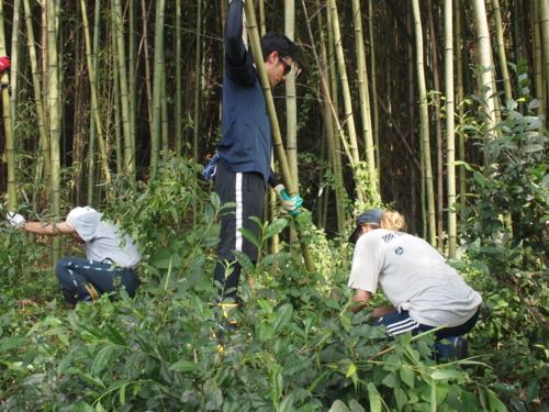 f:id:ryukoku-cha:20131004185832j:image