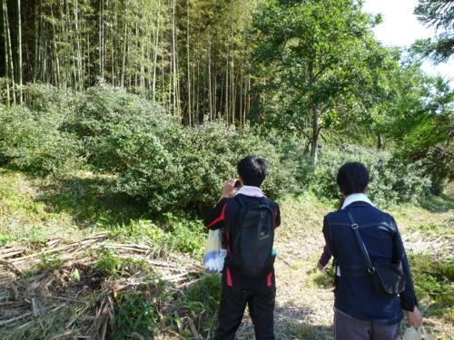 f:id:ryukoku-cha:20131006151124j:image