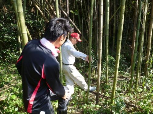 f:id:ryukoku-cha:20131006151208j:image