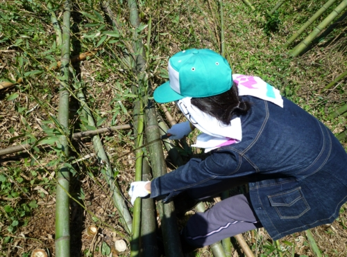 f:id:ryukoku-cha:20131006151655j:image