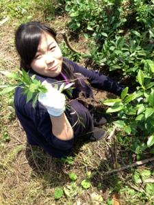 f:id:ryukoku-cha:20131008190128j:image