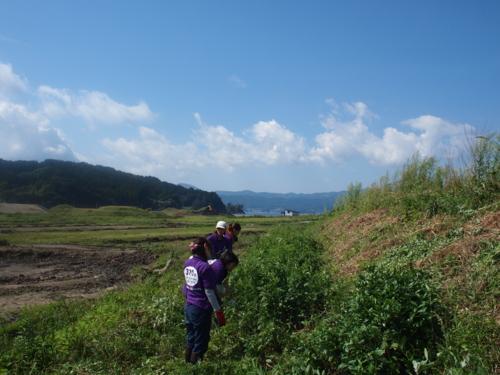 f:id:ryukoku-cha:20131015192824j:image
