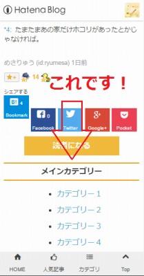 f:id:ryumesa:20160424205755j:plain