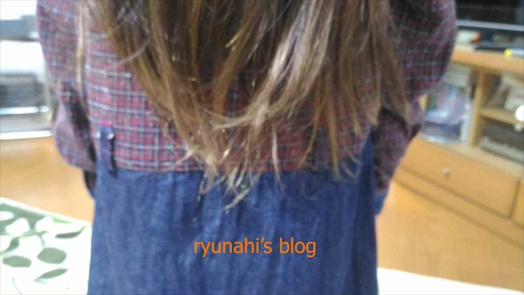f:id:ryunahi:20190207212436j:plain