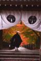 京都新聞写真コンテスト 冬、春、夏、そして秋もここが、私の職場