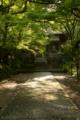 京都新聞写真コンテスト 木漏れ日ゲート