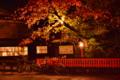 「京都新聞写真コンテスト 秋ですが、青春」