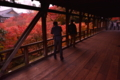 京都新聞写真コンテスト あと、少しだけ