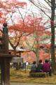 京都新聞写真コンテスト 一休み