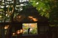 京都新聞写真コンテスト 日々美しく