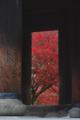 京都新聞写真コンテスト 秋限定紅葉掛軸
