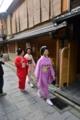 京都新聞写真コンテスト 受け継ぐ誇り