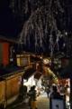 京都新聞写真コンテスト また春が来ました