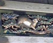 f:id:ryushi2002:20090815141624j:image