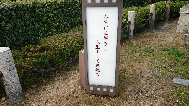 f:id:ryuteki-life:20181230161532j:plain