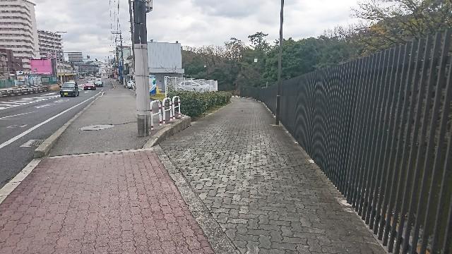 f:id:ryuteki-life:20190112081505j:image