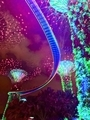 [#trip][#旅][#Thailand][#singapore][#pic]Singapore trip